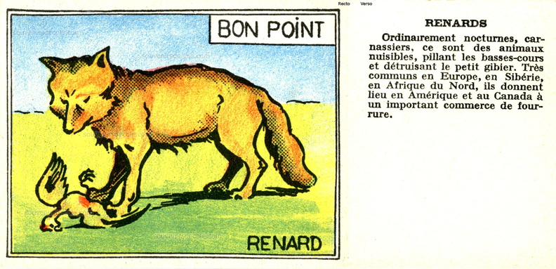 Bon point Faune - cartonné 5 x 6,5 cm - Renard.jpg
