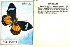 Bon point - Épicalie