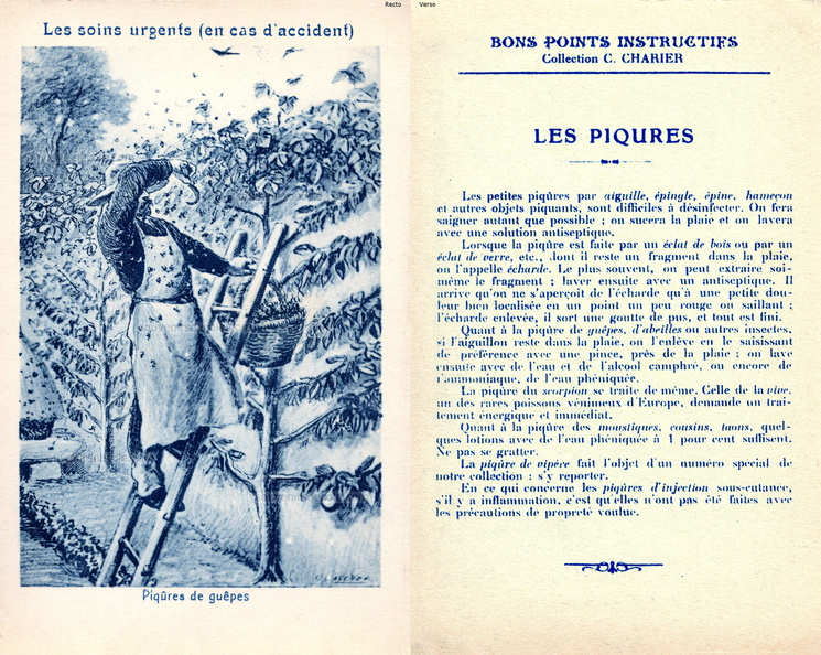 Bons points instructifs - Collection C. Charier - Les soins urgents - piqûres de guêpes.jpg
